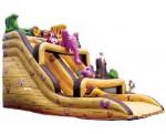 slide-noah